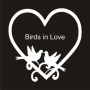 Designer Frame : Birds in Love